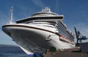 Cruise Liner Excursions